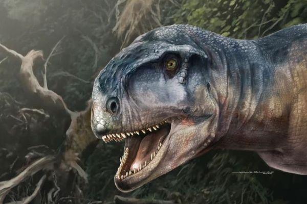 アルゼンチンで新種の肉食恐竜の化石を発見、研究結果を発表