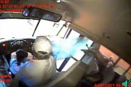 米でスクールバスにシカが激突、窓ガラスを破って車内に飛び込んできた!