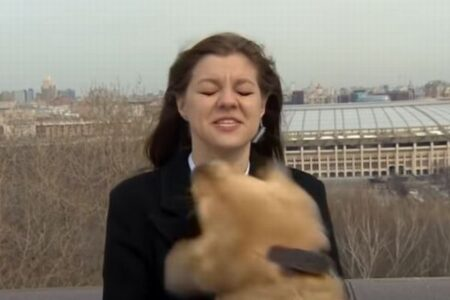 ロシアのテレビ中継でハプニング、お天気レポーターのマイクが犬に奪われてしまう
