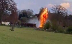 牛乳瓶だと思ったら手榴弾だった!英の庭で42個も発見され、爆破処理