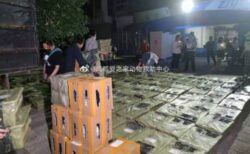中国でペット用のブラインドボックスに批判殺到、箱に詰められた瀕死の子犬や子猫を発見【写真複数】