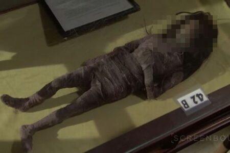 映画の小道具だった「干し首」が、本物の人の頭と判明