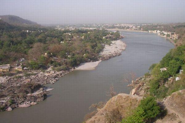 インドのガンジス川に40人の遺体が打ち上がる、新型コロナにより死亡か