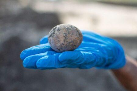 イスラエルの遺跡で古代の鶏卵を発見、ほぼ完全な状態で残っていた!