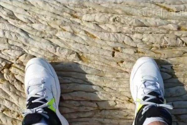トルコの沿岸にブヨブヨした物体、不気味なものが大量に押し寄せる【動画】