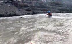 カナダでカヤッカーがヘラジカの赤ちゃんを救助、激流に流されるのを見事キャッチ
