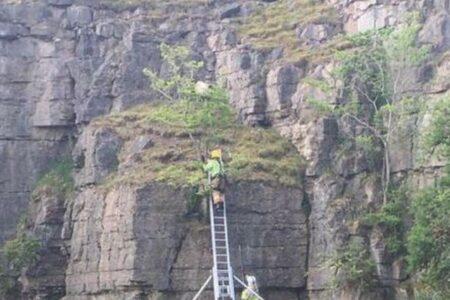 イギリスの崖の上にも「ポニョ」?消防士が行き場を失った羊を救助