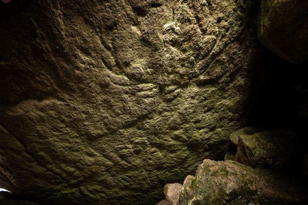 スコットランドにある先史時代の遺跡から、岩に刻まれた鹿の絵を発見
