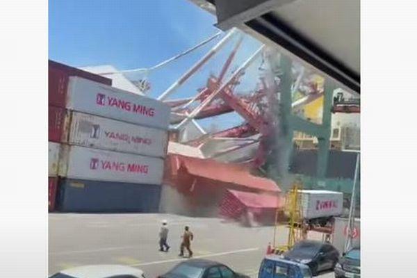 台湾の港で巨大クレーンが倒壊、埠頭に積まれていたコンテナを破壊
