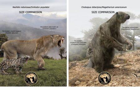 かつてはこんなに巨大だった! 現存する生物と古代生物を並べた画像が圧巻