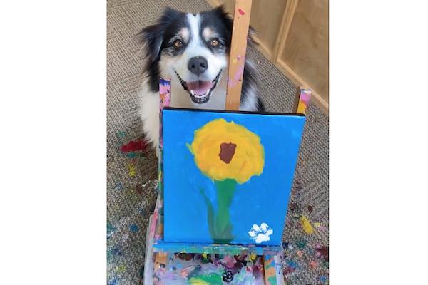 犬がまともな絵を描いた!【動画】