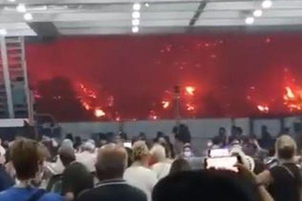 ギリシャで山林火災が制御不能、フェリーで人々が避難する動画が恐ろしい