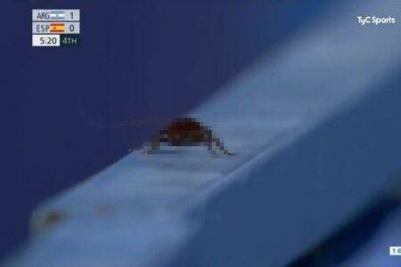 【東京五輪】女子ホッケーの試合中、カメラマンが意外な生物を撮影してしまう