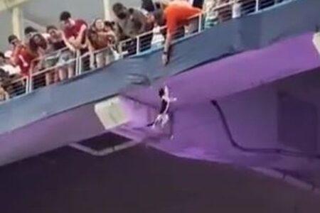スタジアムの観客席からネコが落下、無事が確認され歓声が響き渡る