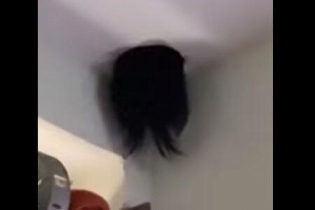 天井に現れた毛髪の塊、その正体は娘だった