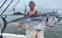 ニューヨークの近海にクロマグロが出現、釣り人で賑わう